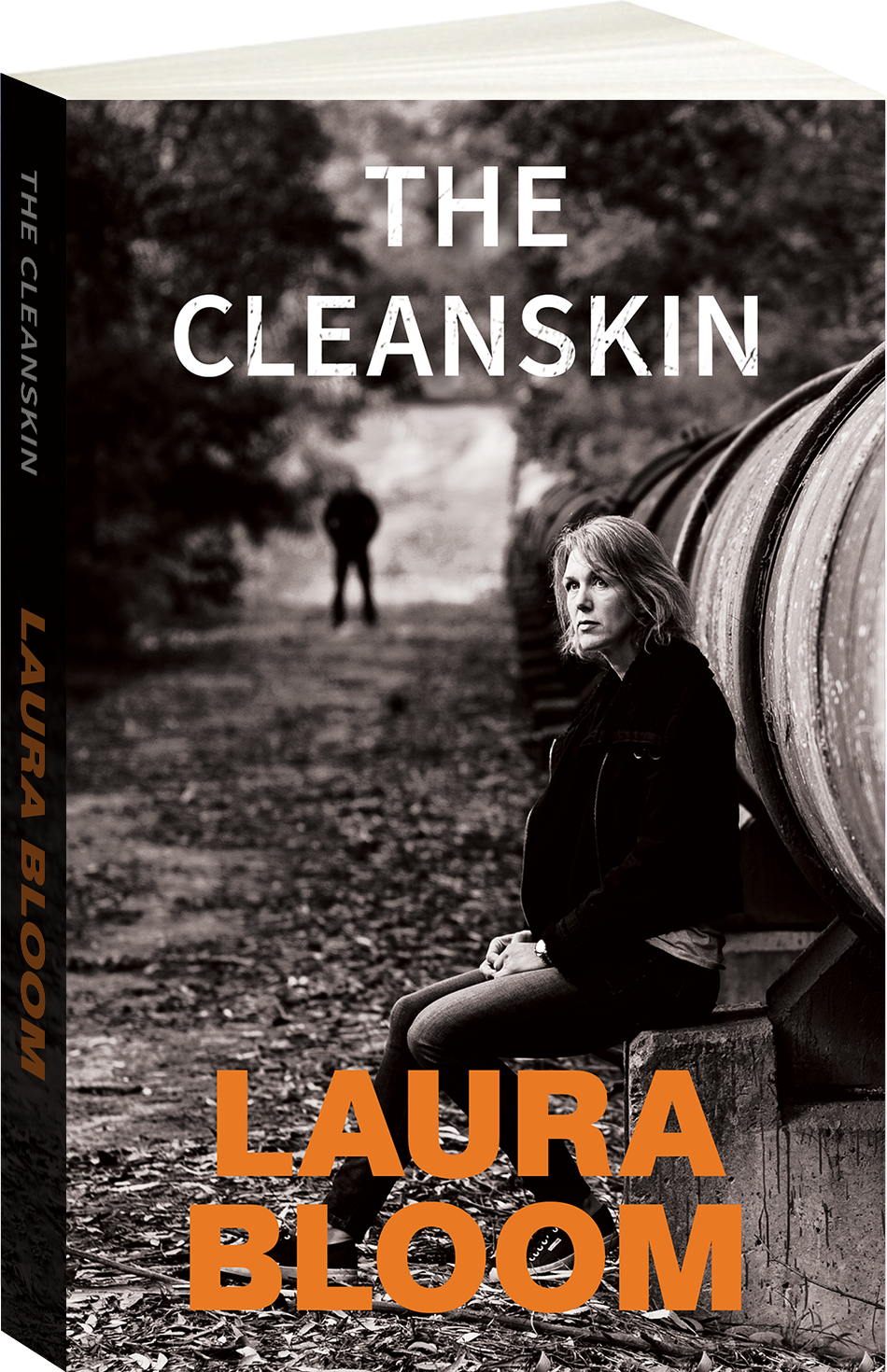 The Cleanskin Cover Image