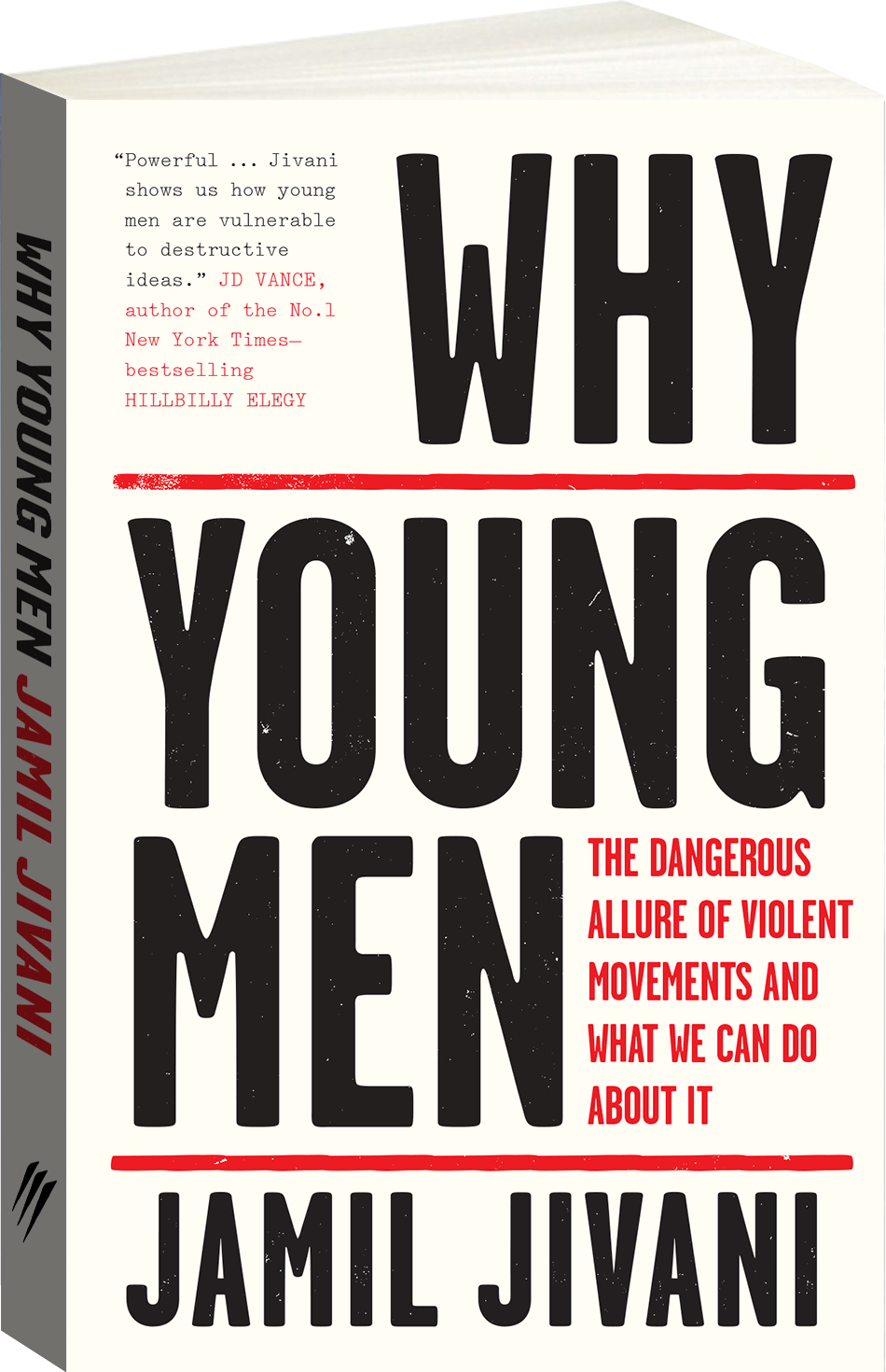 Why Young Men Cover Image
