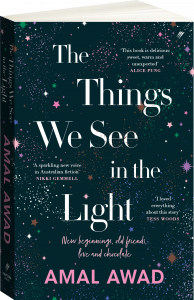 The Things We See in the Light Cover