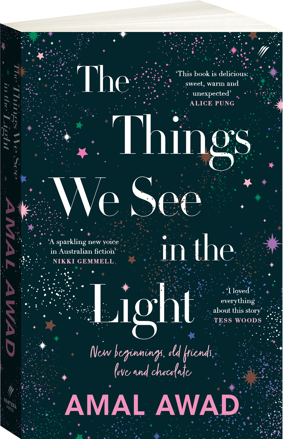 The Things We See in the Light Cover Image
