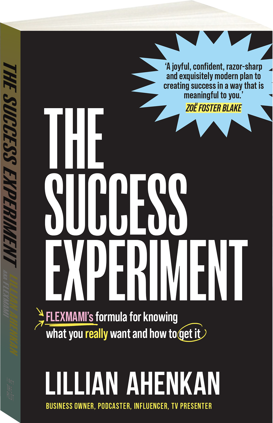 The Success Experiment Cover Image
